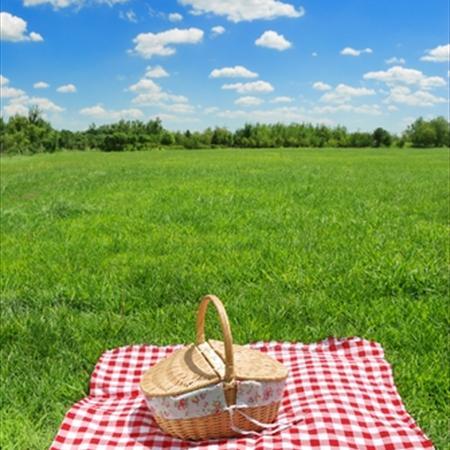 spring-picnic