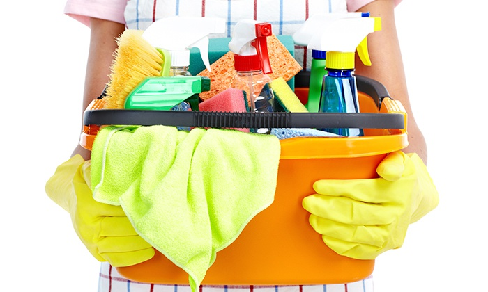 ace personnel skilled homemakers